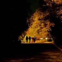 Демоны в ночи :: Анатолий Шулков