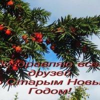 Старый Новый Год :: татьяна