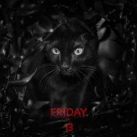 Friday 13 :: Фотостудия Объективность