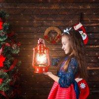 В Новогоднюю ночь :: Ольга Палей