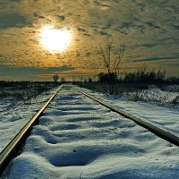 Забытая дорога в никуда... :: Александр Бойко