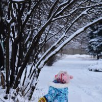 Когда деревья были большими... :: Татьяна Евдокимова