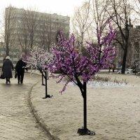 Новогодние деревья :: Герман