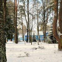 Детский лагерь в январе :: Милешкин Владимир Алексеевич