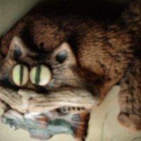 Портрет керамической кошки с рыбой. (Керамичесская мастерская Владимира Атабекяна. Санкт-Петербург). :: Светлана Калмыкова