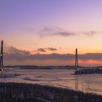 Владивосток мост на о.Русский :: Наталья Цыпцына