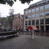 Амстердам. Под дождем. :: шубнякова