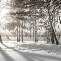 Мороз и солнце :: Валентин Цапков