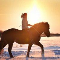 Зимнее тепло :: Диана