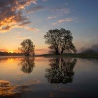 Весенний разлив :: Михаил Корнилов