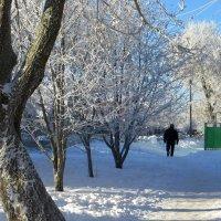 Вот она - зима! :: Татьяна Смоляниченко