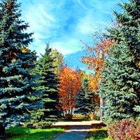 Осень :: lapin_valerei@mail.ru