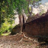Камбоджа. Преа Кхан (Preah Khan) :: Tatiana Belyatskaya