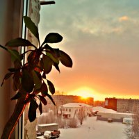 за окном зима и минус 26 градусов)) :: Валерия Воронова