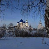 Меж двух берёз! :: Владимир Шошин