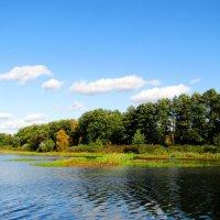 Осенний день на озере :: Андрей Снегерёв