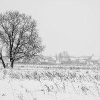 пришла зима :: николай постернак