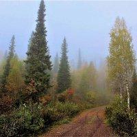 Осенняя дорога :: Сергей Чиняев