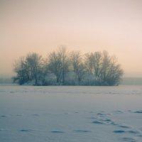 Замерзший остров :: Artem Zelenyuk