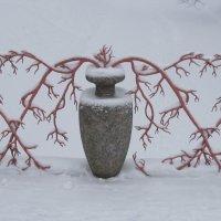 Зима в Александровском саду :: Маера Урусова