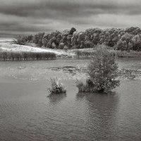 На озере. :: Андрий Майковский