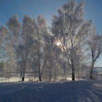 Зимнее кружево :: Ольга