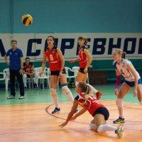 Волейбол. :: Надежда Парфенова