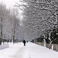 Шел человек по снегу.... :: Валентина ツ ღ✿ღ