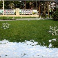Снег и снежинки :: Нина Бутко