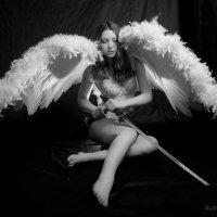 Девушка с крыльями и мечами :: Руслан Веселов