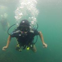 Отдых на море, Крым. Дайвинг. Подводная сьёмка-5. :: Руслан Грицунь