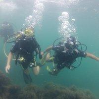 Отдых на море, Крым. Дайвинг. Подводная сьёмка-4. :: Руслан Грицунь