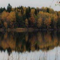 осенние ноты :: liudmila drake
