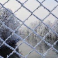 Зима. :: Береславская Елена