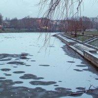 Первые заморозки :: Сергей Тарабара