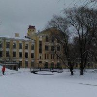 Зимний пейзаж (Юсуповский сад). :: Светлана Калмыкова