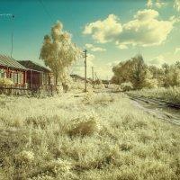 Хорошо в деревне летом :: Сергей