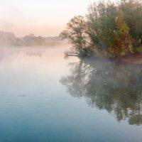 Туманное утро на Десне :: Александр Березуцкий (nevant60)