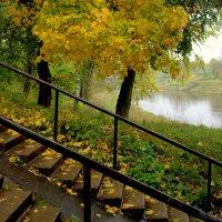 Золотая Осень Речка Черёмуха Рыбинск :: Горелов Дмитрий