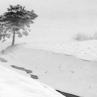Зима. :: Aлександр Klinovskis