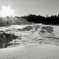Снег. Красок на свете нет. Есть только белый снег... :: Alexandr Zykov