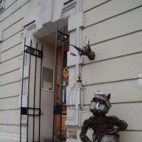 Встречающий у музея кошек :: Валентина Папилова