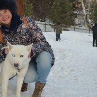 На прогулке с хаски. Зима 2016 :: Юлия Маслова