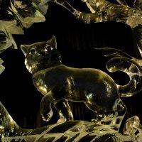 Ледяной ученый кот :: Наталия П