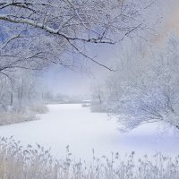 Остыли реки, и земля остыла, но я мороза не боюсь... :: Вадим Качан