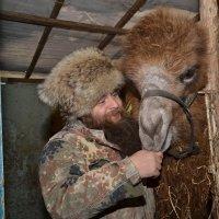 Такая вот любовь :: Сергей
