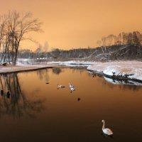 зимнее озеро :: Aleksandr Kaziniets