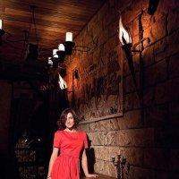 Портрет в интерьере замка :: Mitya Galiano