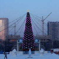Ёлка :: Дмитрий Арсеньев
