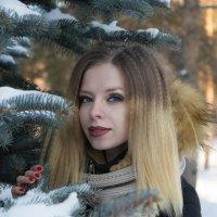 winter :: Антон Криухов